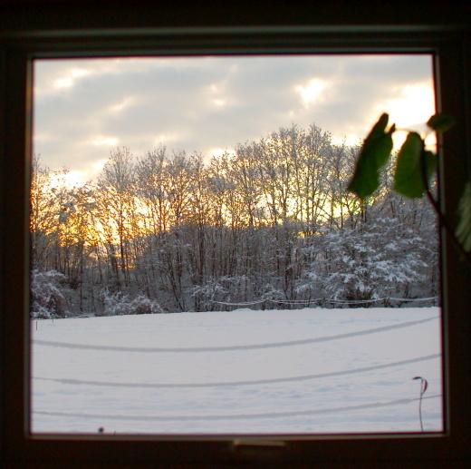 クリスマス前に初積雪_c0110869_09242678.jpg