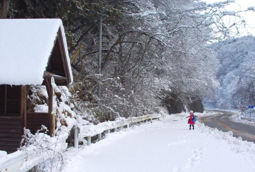 クリスマス前に初積雪_c0110869_09243774.jpg
