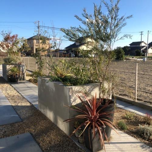 ガーデン完成!_b0239082_15175372.jpg