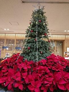 東京タワー_a0264383_08512479.jpg