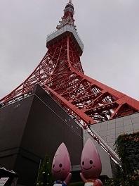 東京タワー_a0264383_08565283.jpg