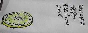 12月22日「檸檬」_f0003283_06535935.jpg