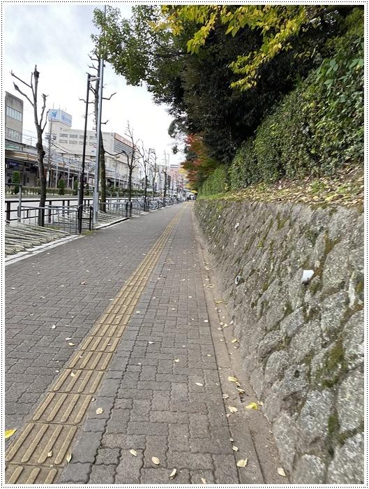 愛知県(名古屋周辺)でのお出かけ その3 意外と近くにあったのに、初めての熱田神宮 (11月28日)_b0175688_23480697.jpg