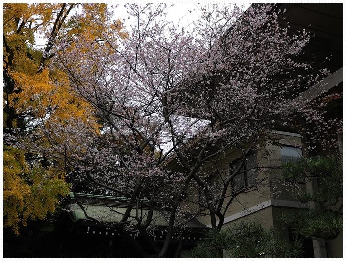 愛知県(名古屋周辺)でのお出かけ その3 意外と近くにあったのに、初めての熱田神宮 (11月28日)_b0175688_23511480.jpg