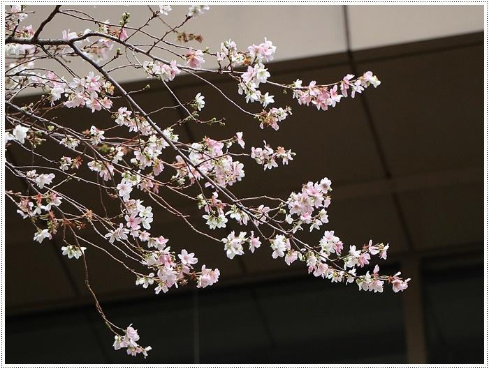 愛知県(名古屋周辺)でのお出かけ その3 意外と近くにあったのに、初めての熱田神宮 (11月28日)_b0175688_23512453.jpg