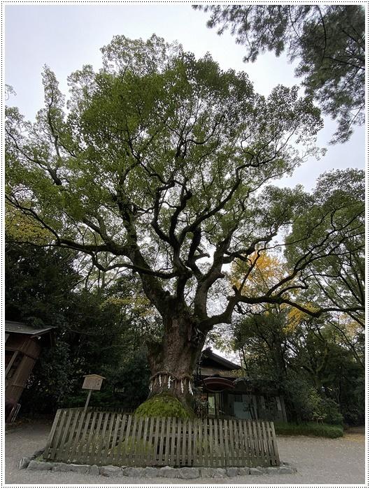 愛知県(名古屋周辺)でのお出かけ その3 意外と近くにあったのに、初めての熱田神宮 (11月28日)_b0175688_23554251.jpg