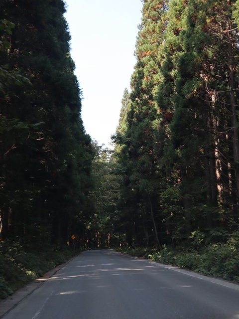 渡辺水産の若き期待の星に会う、ここは青森県むつ市です下北半島の旅をご紹介、神秘的な自然の中に恐山という霊場あり_d0181492_23383865.jpg