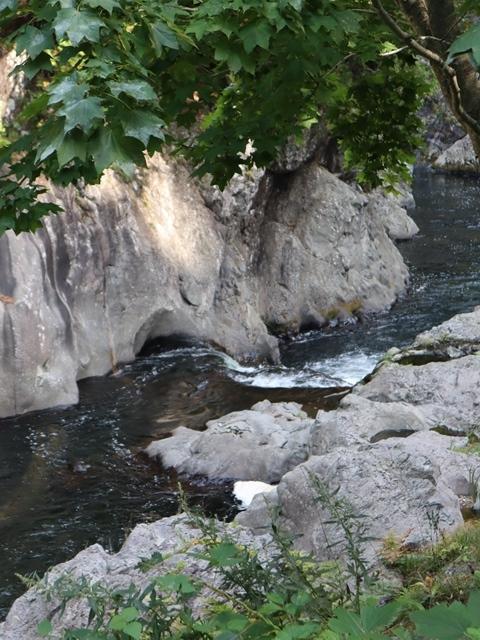 藤田八束鉄道の旅、恐山を訪ねて・・・・むつ市・渡辺水産のベビーホタテと裂きイカ、これ最高です。美味しさの秘訣は自然の恵みにありました。_d0181492_23395997.jpg