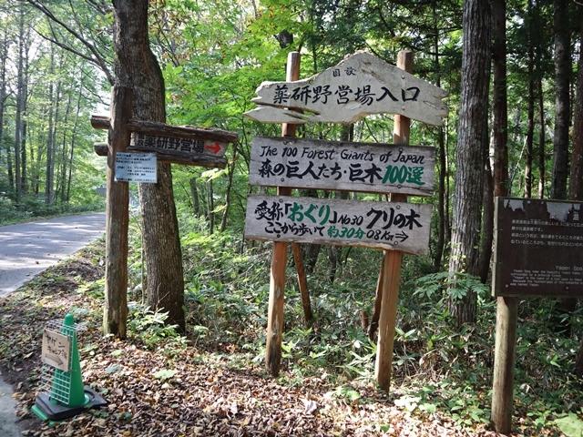 藤田八束鉄道の旅、恐山を訪ねて・・・・むつ市・渡辺水産のベビーホタテと裂きイカ、これ最高です。美味しさの秘訣は自然の恵みにありました。_d0181492_23401150.jpg