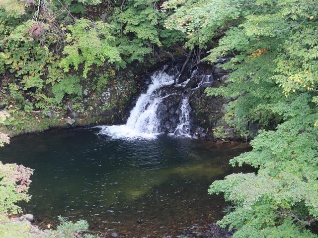 藤田八束鉄道の旅、恐山を訪ねて・・・・むつ市・渡辺水産のベビーホタテと裂きイカ、これ最高です。美味しさの秘訣は自然の恵みにありました。_d0181492_23404105.jpg