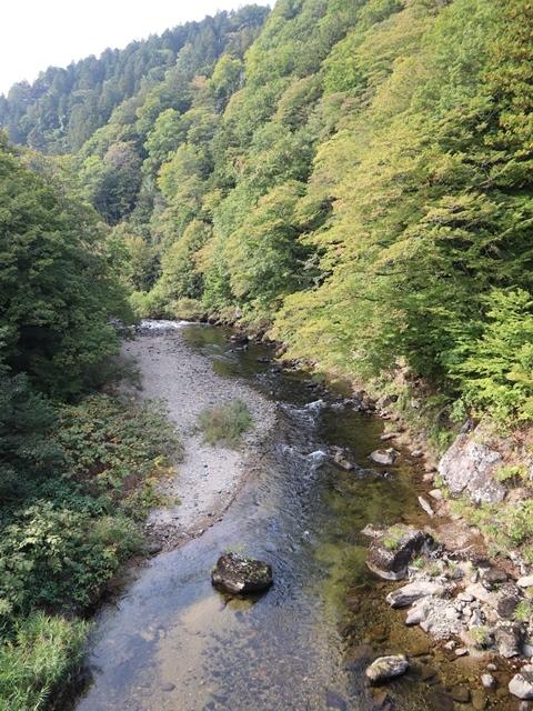 藤田八束鉄道の旅、恐山を訪ねて・・・・むつ市・渡辺水産のベビーホタテと裂きイカ、これ最高です。美味しさの秘訣は自然の恵みにありました。_d0181492_23412006.jpg