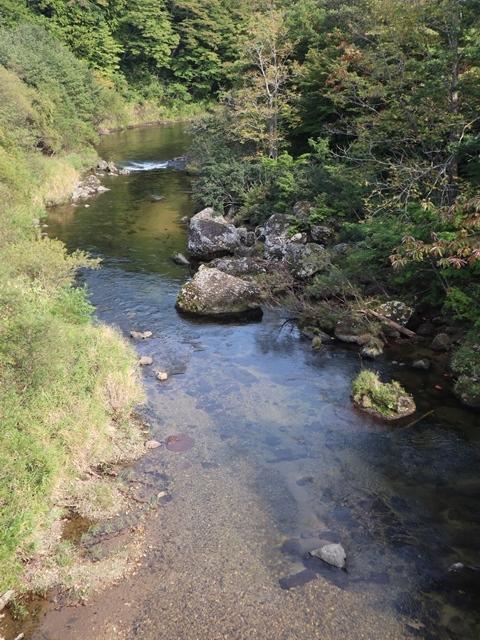 藤田八束鉄道の旅、恐山を訪ねて・・・・むつ市・渡辺水産のベビーホタテと裂きイカ、これ最高です。美味しさの秘訣は自然の恵みにありました。_d0181492_23415132.jpg
