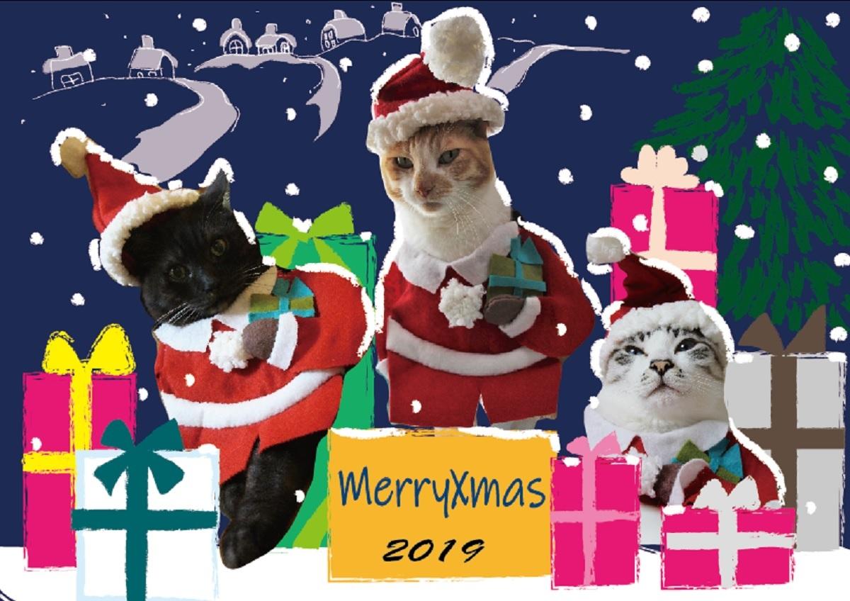 クリスマスカード_a0333195_22255907.jpg