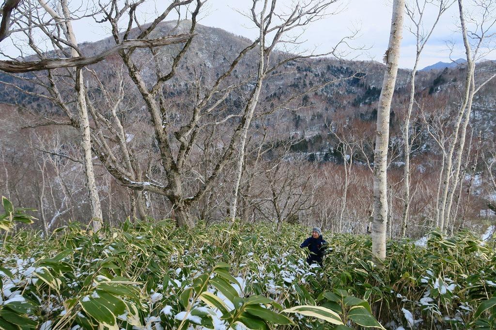 トレースがあった幌平山、2019.12.23_f0138096_17552716.jpg