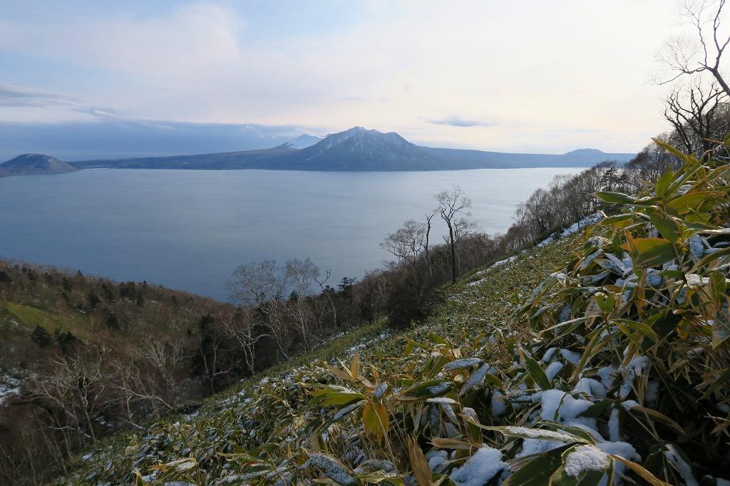 トレースがあった幌平山、2019.12.23_f0138096_17571397.jpg