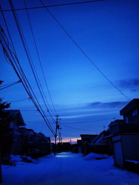 12月23日 今日の写真_b0103798_21622.jpg