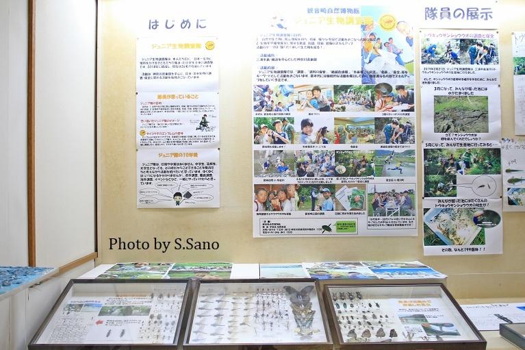 ジュニア生物調査隊~企画展示(2019)~_b0348205_17502873.jpg