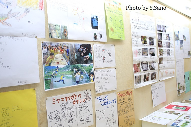 ジュニア生物調査隊~企画展示(2019)~_b0348205_17505116.jpg