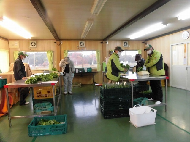 障害を持つ方が一般就労に結びついている! 農福連携事業に取り組む「シグマファームとういん」(三重県東員町)_f0141310_07020597.jpg