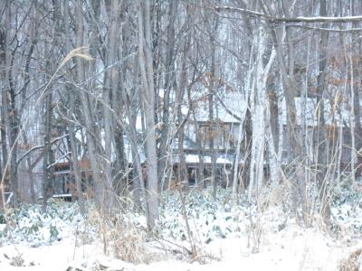 12月24日  小雪 -1度_f0210811_15233867.jpg