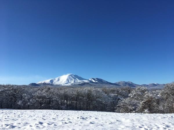 積雪約15cm!ノーマルタイヤでは危険です(2019年12月23日)_b0174425_01522608.jpeg