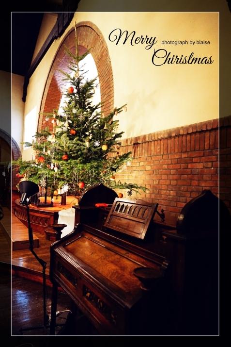 Merry Chiristmas_d0165225_23344825.jpg