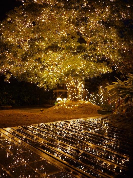沖縄冬至越えの旅2 ホテルの朝ごはんが好き_e0359436_20023644.jpeg