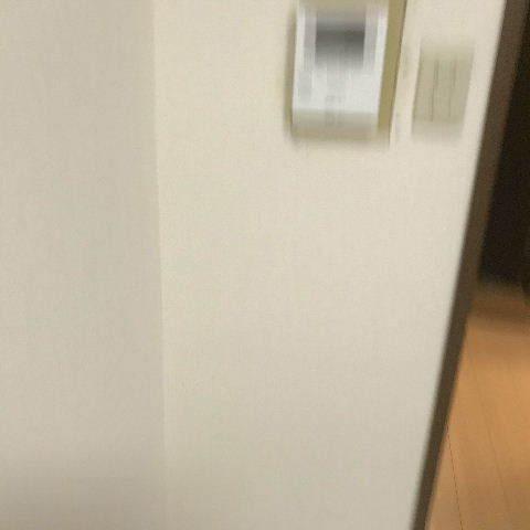 新春第二弾の現調・打ち合わせ_f0031037_21154192.jpg