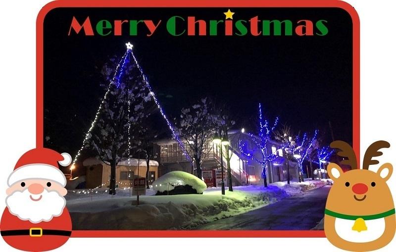 ホワイトクリスマス_e0341538_13402373.jpg