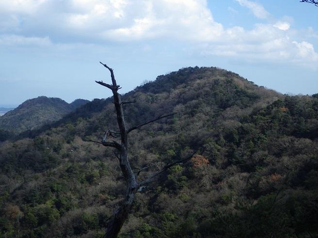 英彦山で雪見登山のはずが・・御所ヶ岳へ_e0164643_19352944.jpg