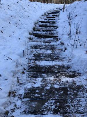 雪掻きでスタート_c0341450_20271590.jpg