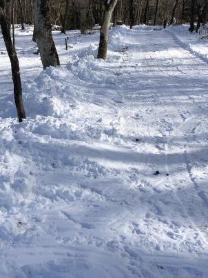 雪掻きでスタート_c0341450_20313542.jpg