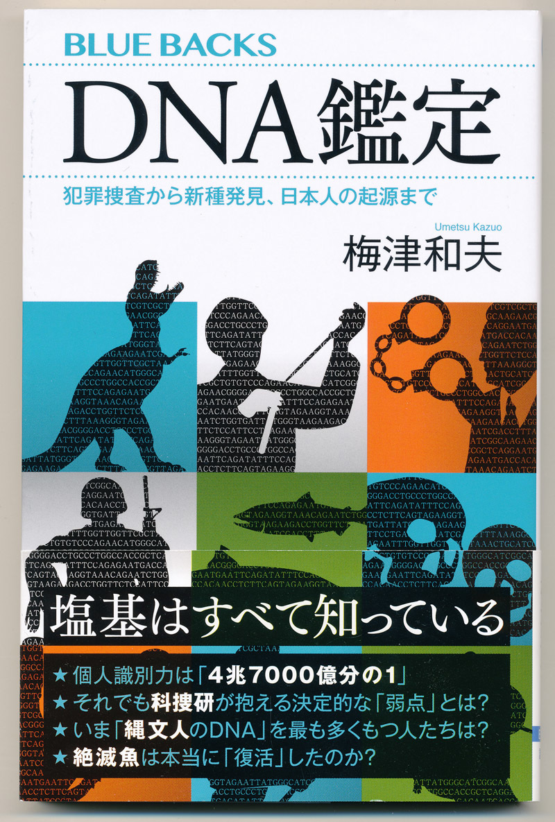 日本人の起源と 地球温暖化問題?_e0039759_10482992.jpg