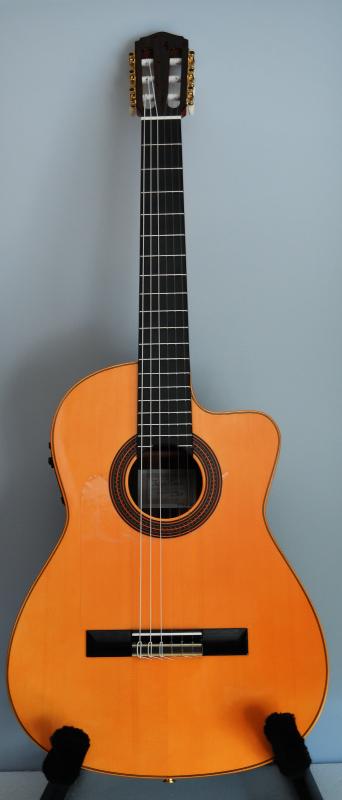 コンデエルマノス   エレクトリックフラメンコギター入荷しました_c0330563_14132135.jpg