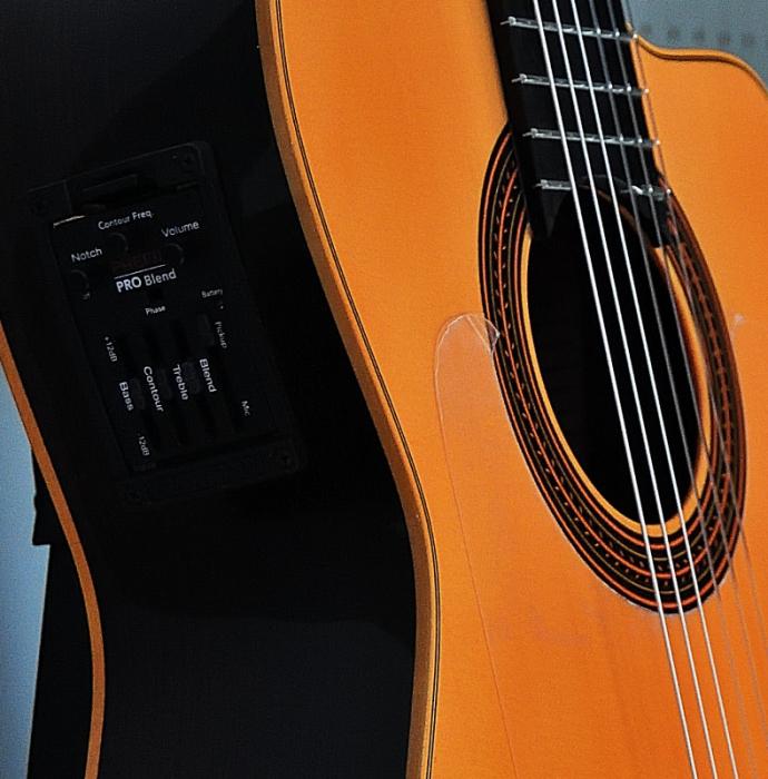 コンデエルマノス   エレクトリックフラメンコギター入荷しました_c0330563_14134871.jpg