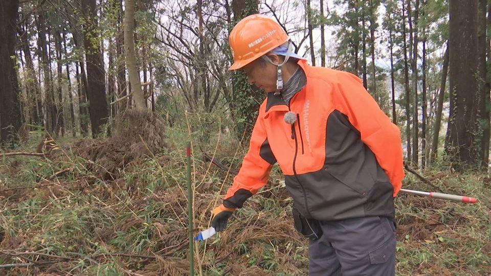 J:COM 湘南・鎌倉が山桜植樹を放映12・24_c0014967_20215930.jpg