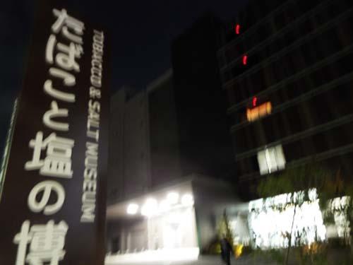 ぐるっとパスNo.6・7 現代美とたば塩博「ミニチュア」展まで見たこと_f0211178_18113476.jpg