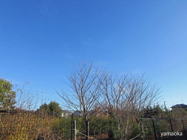 広い空の下で仕事をし、暮らしているんだって思った。_f0071480_17511906.jpg