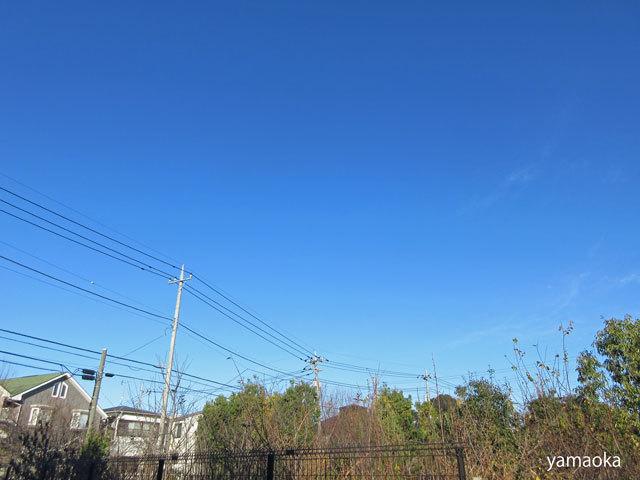広い空の下で仕事をし、暮らしているんだって思った。_f0071480_17512298.jpg