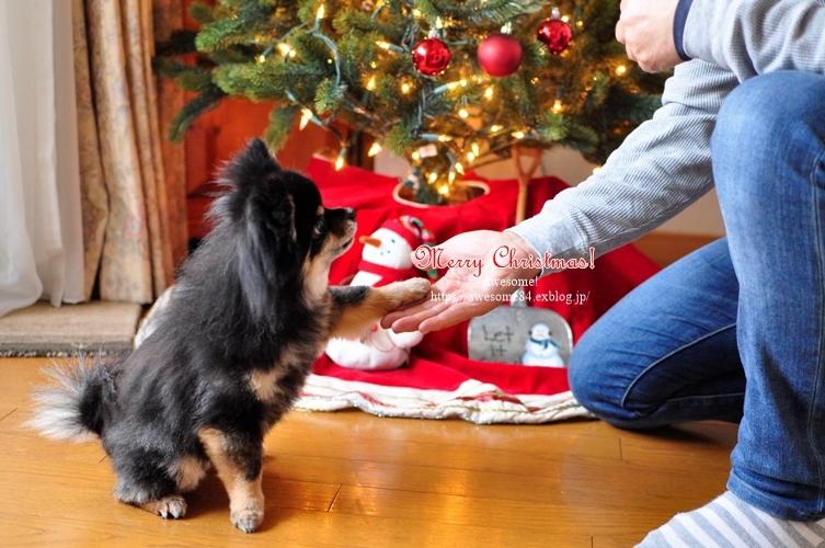 おうちクリスマスごはん_e0359481_18114719.jpg