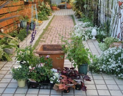 ◆庭仕事・・・何か足りない!_e0154682_00384074.jpg