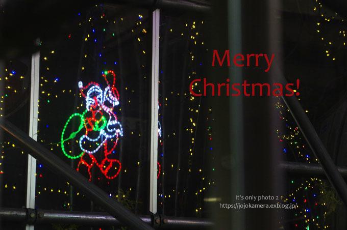 工事現場のクリスマスツリー_b0391986_23362875.jpg