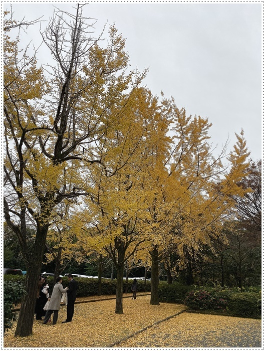 愛知県(名古屋周辺)でのお出かけ その3 意外と近くにあったのに、初めての熱田神宮 (11月28日)_b0175688_00053830.jpg