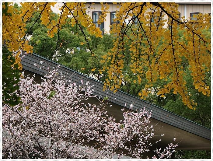 愛知県(名古屋周辺)でのお出かけ その3 意外と近くにあったのに、初めての熱田神宮 (11月28日)_b0175688_00222880.jpg