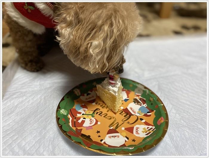 今夜はクリスマスイブ、我が家はクリスチャンではないけど、さくらも大も、色々食べられて、それだけで大満足だね~_b0175688_20520145.jpg