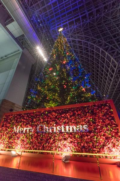 京都駅ビル_e0051888_06263764.jpg