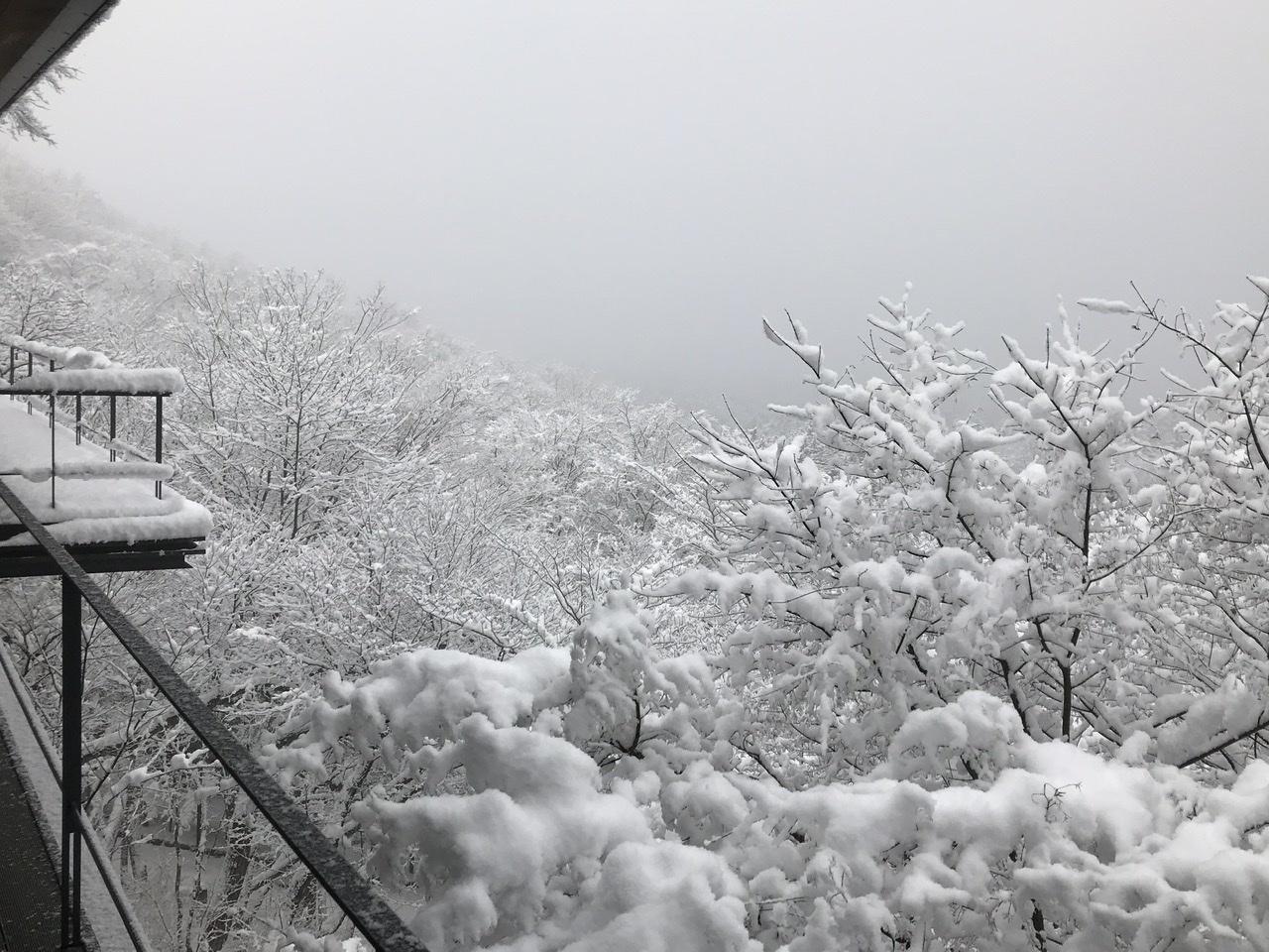 軽井沢で過ごすクリスマス_d0339896_21023917.jpeg