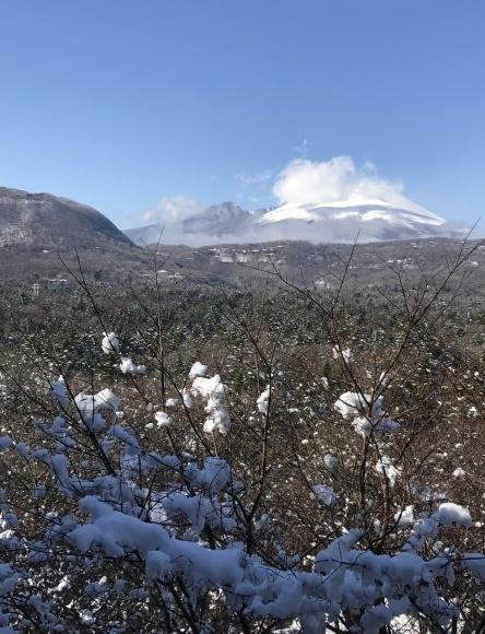 軽井沢で過ごすクリスマス_d0339896_21245662.jpeg