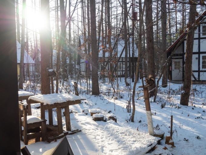 憧れの雪あるクリスマス・・エゾリス君とお祝いです。_f0276498_17223229.jpg