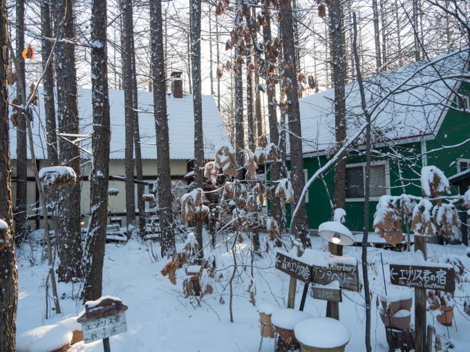 憧れの雪あるクリスマス・・エゾリス君とお祝いです。_f0276498_17224811.jpg
